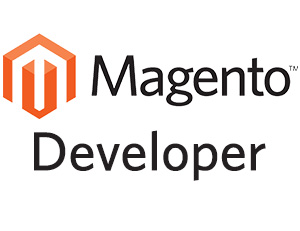 Magento freelance developer